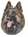 terv011 Belgian Tervuren (small or large design)