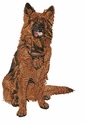 terv022 Belgian Tervuren (small or large design)
