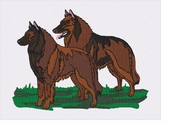 terv029 Belgian Tervuren (small or large design)