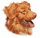 toller001 Nova Scotia Duck Tolling Retriever (small or large design)