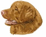 toller004 Nova Scotia Duck Tolling Retriever (small or large design)
