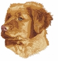 toller011  Nova Scotia Duck Tolling Retriever (small or large design)