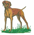 v004 Vizsla (small or large design)