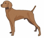v005 Vizsla (small or large design)