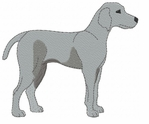 weim013 Weimaraner (small or large design)