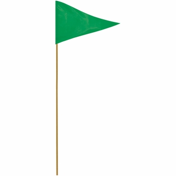 "Green 12"" X 18"" Mounted Pennant Flag"