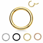 G23 Solid Titanium Hinged Segment Seamless Ring for Cartilage, Daith, Helix, Eyebrow - 16 Gauge