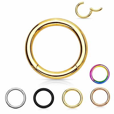 G23 Solid Titanium Hypoallergenic Hinged Seamless Clicker Ring for Cartilage, Daith, Helix, Eyebrow, Nose