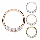 Multi-Gem Seamless Hoop Ring for Daith, Rook, Tragus, Cartilage, Helix, Septum - 16G