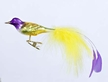 Caribbean Yellow Tail Bird Ornament by Inge Glas