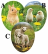 "Young Animals 15cm (6"") Decoupage Cardboard German Easter Eggs by Nestler - $7.50 each"