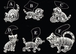 Lace Cat Ornament by Stickservice Patrick Vogel in OT Hammerbr�cke - $4.00 Each