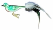 Fancy Turquoise Bird Ornament by Inge Glas