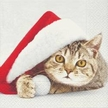 Christmas Cat Luncheon Size Paper Napkins by Made by Paper + Design GmbH