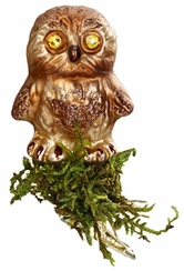 Hootie Owl Ornament by Inge Glas