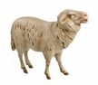 17cm Scale Sheep 2/Special Order Sandi