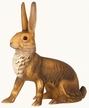 Large Sitting Rabbit  Paper Mache Candy Container by Marolin