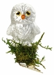 Little Who, Baby Owl Ornament by Inge Glas