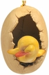 Paper Mache Egg with Yellow Duckling