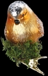 Soothing Song, Bird Ornament by Inge Glas