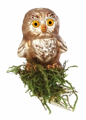 Young Owl Clip On Ornament by Inge Glas