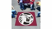 Fan Mats 1898  Chico State Wildcats 5' x 6' Tailgater Mat / Area Rug