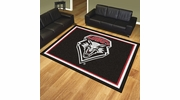 Fan Mats 20230  University of New Mexico Lobos 8' x 10' Area Rug