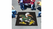Fan Mats 5065  UM - University of Miami Hurricanes 5' x 6' Tailgater Mat / Area Rug