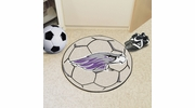 "Fan Mats 588  UW-W - University of Wisconsin Whitewater Warhawks 27"" Diameter Soccer Ball Shaped Area Rug"