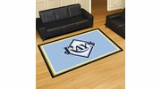 Fan Mats 7088  MLB - Tampa Bay Rays 5' x 8' Area Rug