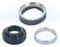 SANDEN COMPRESSOR SHAFT SEAL KIT N83-305580