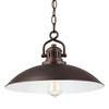 Capital Lighting (3798) O'Neill 15 Inch Pendant