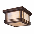 Transitional Outdoor Ceiling Lights