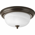 Progress Lighting (P3925-20) 13-1/4 Inch Flush Mount