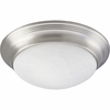 Progress Lighting (P3765-09EBWB) Melon 2-Light Flush Mount
