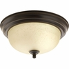 Progress Lighting (P3924-20EUL) 11-3/8 Inch Flush Mount