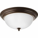 Progress Lighting (P3926-20ET) 15-1/4 Inch Flush Mount