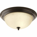 Progress Lighting (P3926-20EUL) 15-1/4 Inch Flush Mount