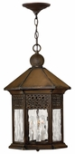 Hinkley Lighting (2992SN) Westwinds Outdoor Hanger in Sienna with Clear Water Glass Panels