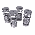 Coilover Springs High Low Kit