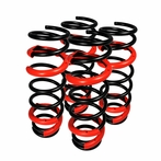 JDM Lowering Springs (Black)