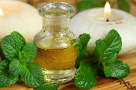 5 Benefits of Using Peppermint Essential Oil for Natural Hair Growth