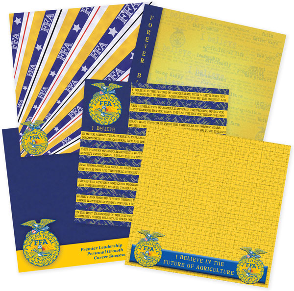 Order Scrapbook Papers Today It Takes Two Inc Sku Ffa 2