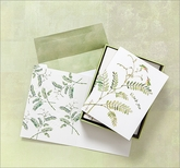 SFNC90621 - Boxed Note Cards