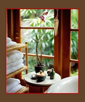 SPA RELAXING HOME FRAGRANCE OIL