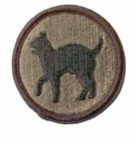 81st Army Reserve Command Subdued Military Patch