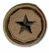 9th Support Command Subdued Military Patch
