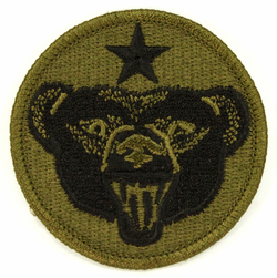 Alaska Defense Command Subdued 2.5 Inch Patch