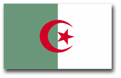 "Algeria Flag 11.75"" Vinyl Transfer Decal"