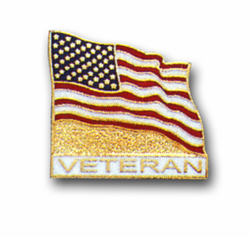 American Flag / Veteran Lapel Pin